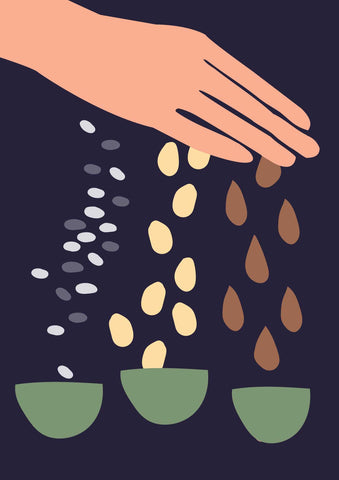 illustration of a hand sprinkling seeds