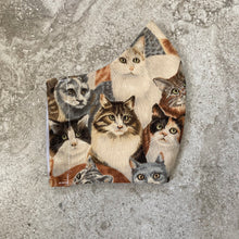 Load image into Gallery viewer, Vintage Cat Print Face Mask