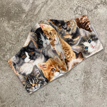 Load image into Gallery viewer, Vintage Kitten Cat Print Face Mask