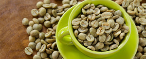 How does Green Coffee help in Weight Loss?