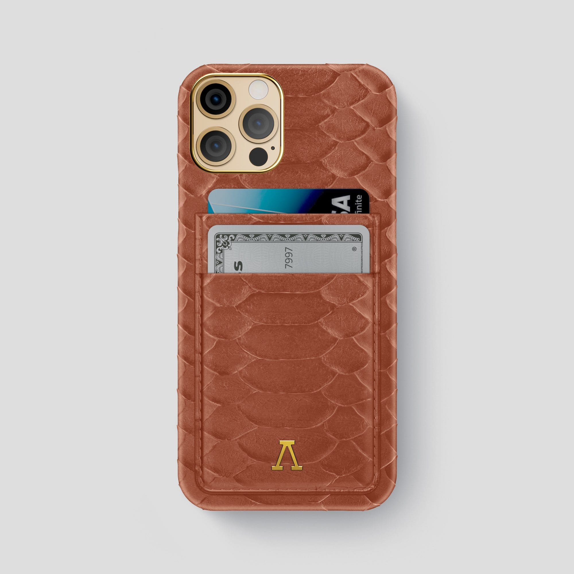 iPhone 12 Pro Max Double Card Case Python