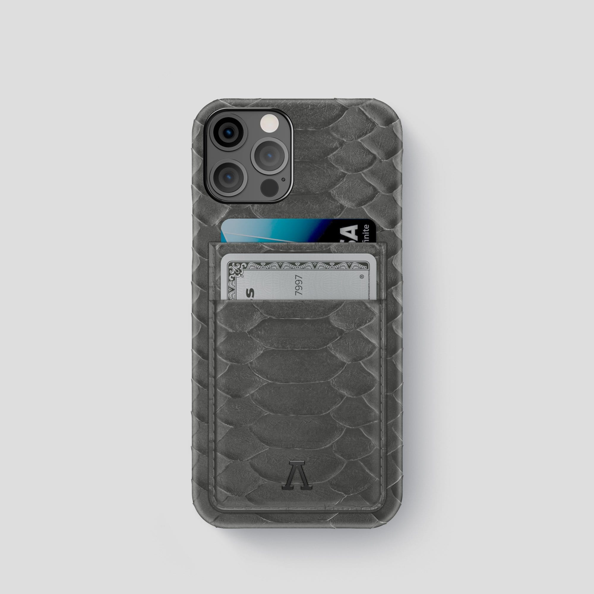 iPhone 12 Pro Double Card Case Python