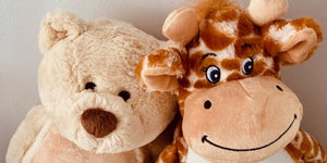 Teddy bear and giraffe soft toys