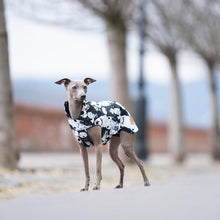 Load image into Gallery viewer, italian greyhound waterproof coat