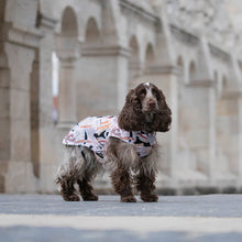 Load image into Gallery viewer, waterproof coat for spaniels