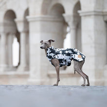Load image into Gallery viewer, italian greyhound raincoat