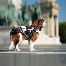 Load image into Gallery viewer, luxury dog coat