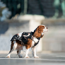 Load image into Gallery viewer, waterproof dog coat