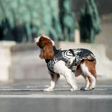 Load image into Gallery viewer, adjustable dog coat in all sizes
