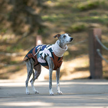Load image into Gallery viewer, greyhound coat, sighthound wintercoat