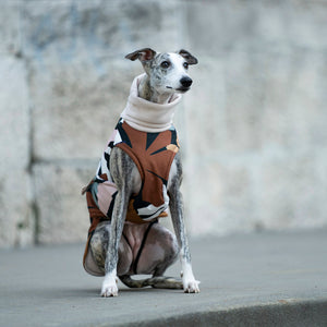 waterproof whippet coat