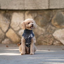 Load image into Gallery viewer, coat for poodles, coat for cavapoos