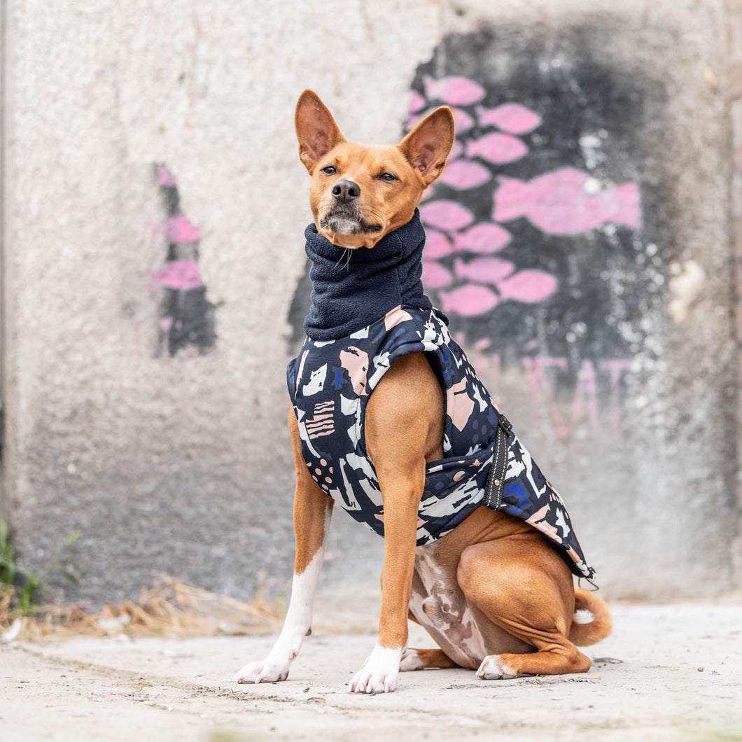 printed dog coat