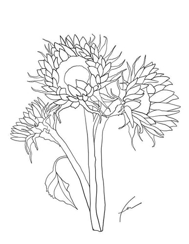 Coloring Pages - Flowers Set-Coloring-fercaggiano
