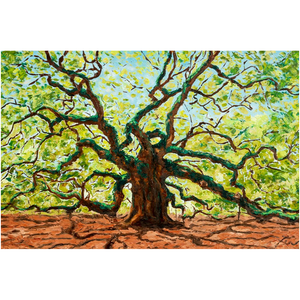 The Majestic Angel Oak Fine Art Prints-paper print-fercaggiano