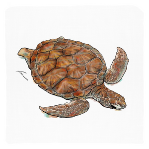 "Turtle Throw Pillows 20x20""-pillows-fercaggiano"