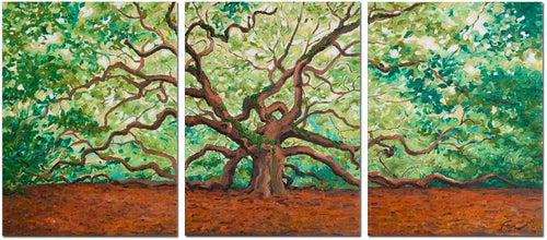 Angel Oak Triptych | Oil on Canvas-original art-fercaggiano