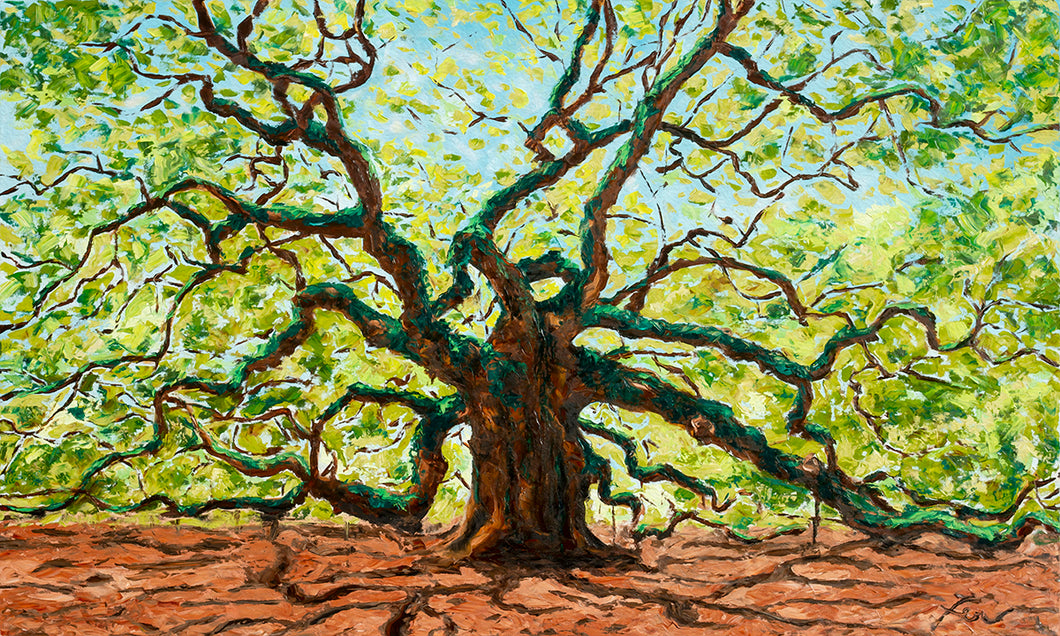 The Majestic Angel Oak | Original Oil Painting | 60x36