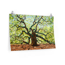 Load image into Gallery viewer, The Majestic Angel Oak Print On Paper-Poster-fercaggiano
