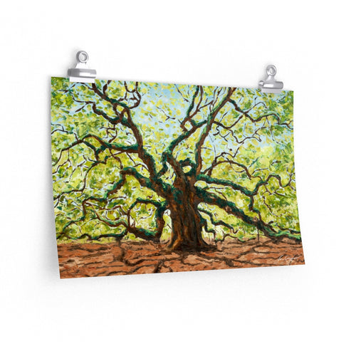The Majestic Angel Oak Print On Paper-Poster-fercaggiano