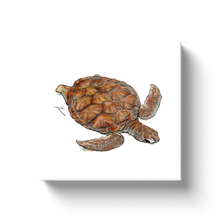 Load image into Gallery viewer, Turtle Canvas Wraps-canvas print-fercaggiano