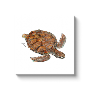 Turtle Canvas Wraps-canvas print-fercaggiano