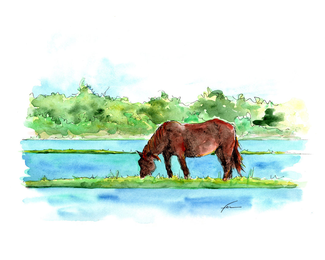 Wild Horse 5 Original Watercolor 12x9-fercaggiano
