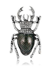 Ash Grey Beetle Brooch.