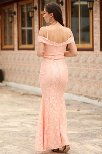 Women's Fish Model Powder Rose Lace Evening Dress