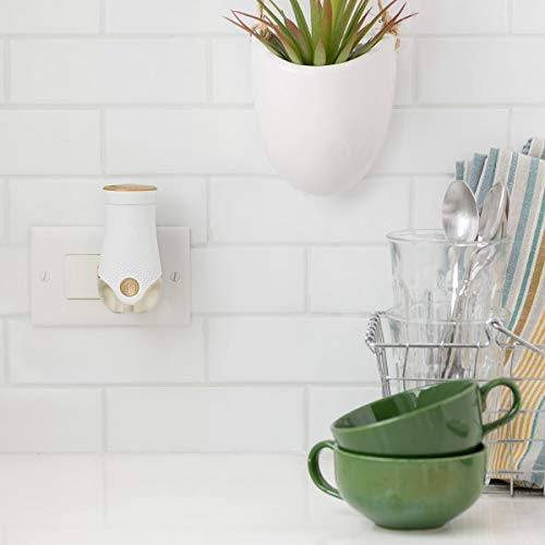 Glade PlugIns Refills Air Freshener, Scented and Essential Oils for Home and Bathroom