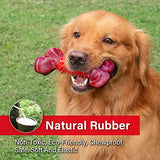 Tough Dog Toys for Aggressive Chewers Large Breed, Apasiri Dog Chew Toys, Durable