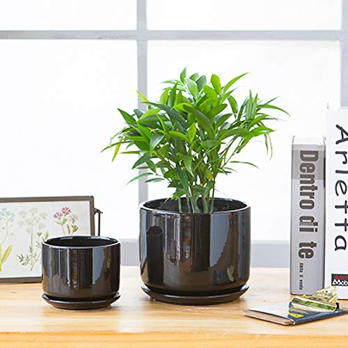 Plant Pots, Flower Pots Planters with Connected Saucer, Round Modern Decorative