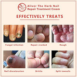 Nail Fungus Treatment, Herb Foot Nail Repair Cream Protector, Antifungal Anti Fungus Nail Care Treatment,Effective Against Nail Fungus (1 PCS)