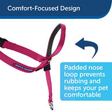 PetSafe Gentle Leader Head Collar with Training DVD, SMALL UP TO 25 LBS.,