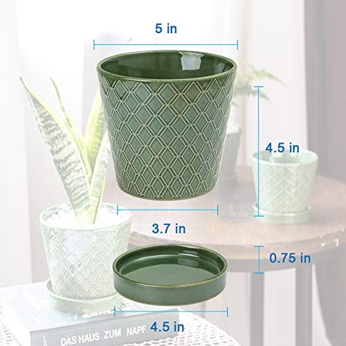 Flower Planter –5 inch Ceramic Plant Pots with Drainage Hole and Ceramic Tray
