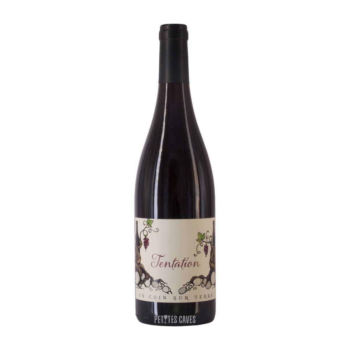 Organic red wine from the Rhône, cuvée Tentation 2019 red - A coin sur Terre - Edouard and Lane Sentex