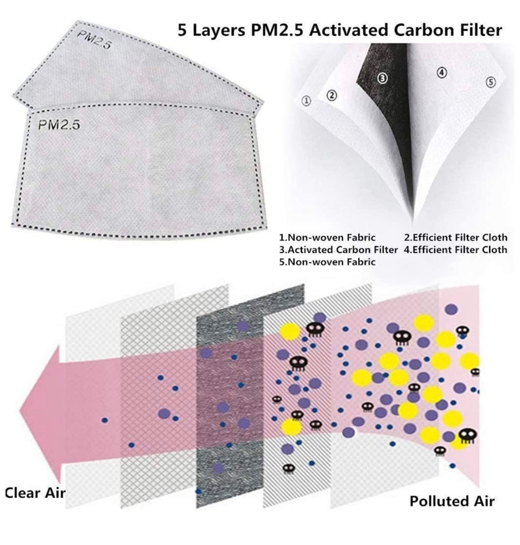 Replacement PM 2.5 Filter Pack [set of 5]