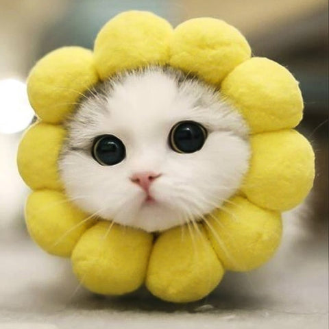 Sunflower Pet Head Cover