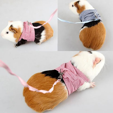 Small Pet Two-legged Chest Strap