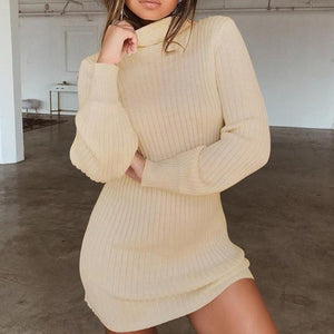 Turtleneck Long Sleeve Dress