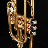 Holt 585830 USED C602 Cornet w Case