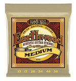 2002 Ernie Ball Earthwood Medium