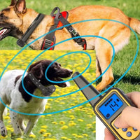 Waterproof Rechargeable Remote Vibration & Shock Dog Training Collar