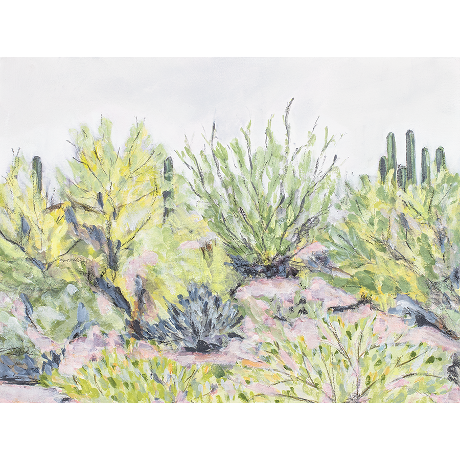 """Desert Plants"" Horizontal Canvas Print"