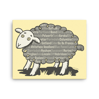 Sheep Breeds Sheep - Canvas Art Print