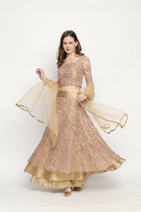 3 pc Lehenga set Blouse Skirt and Dupatta in Embroidery net all over