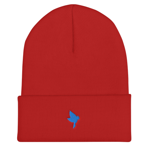 Red Beanie - Blue J Cones