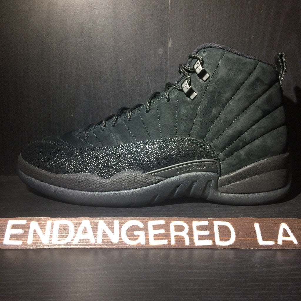 Air Jordan 12 OVO Sz 10