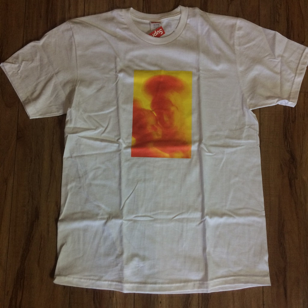 Supreme Madonna and Child White F/W 17' Sz L