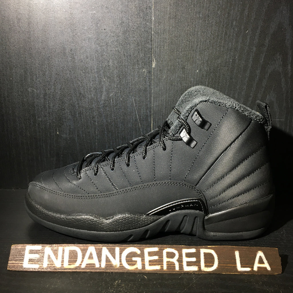 Air Jordan 12 Winter Black Sz 7